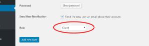 custom user role added
